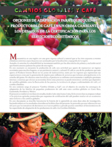 SGP-CRA2060_tapa-policy-brief_sp
